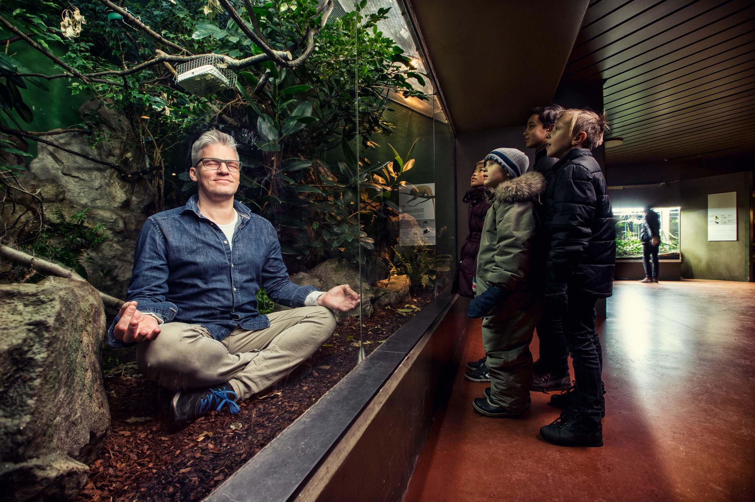 Case meditation in zoo