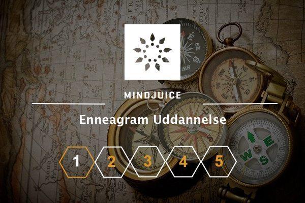 Mindjuice Enneagram Uddannelse