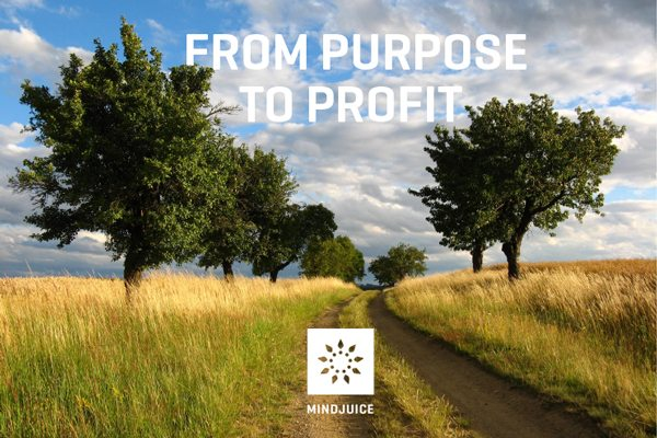 From Purpose To Profit Mindjuice Academy